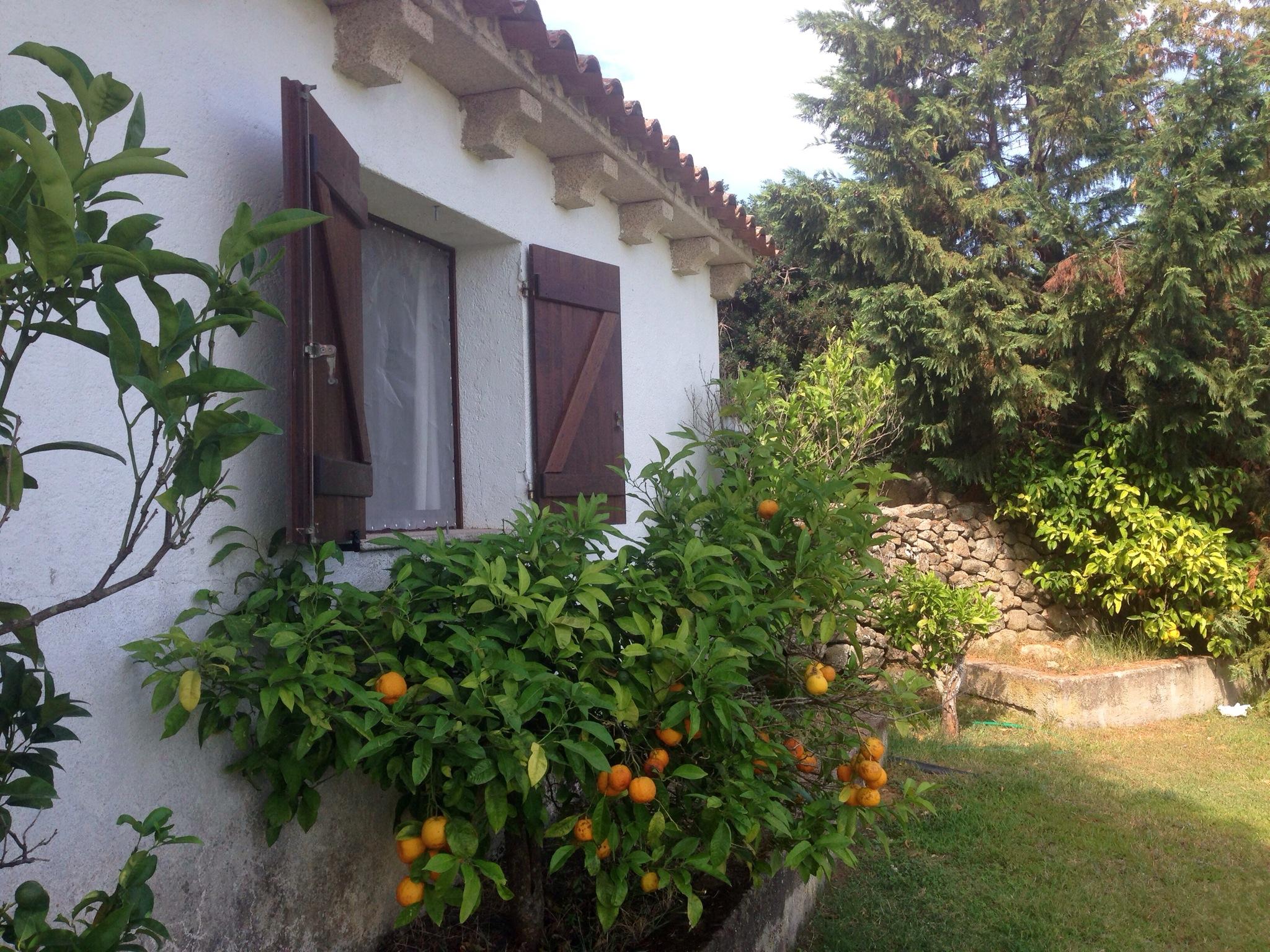 cottage ferienhaus sardinien