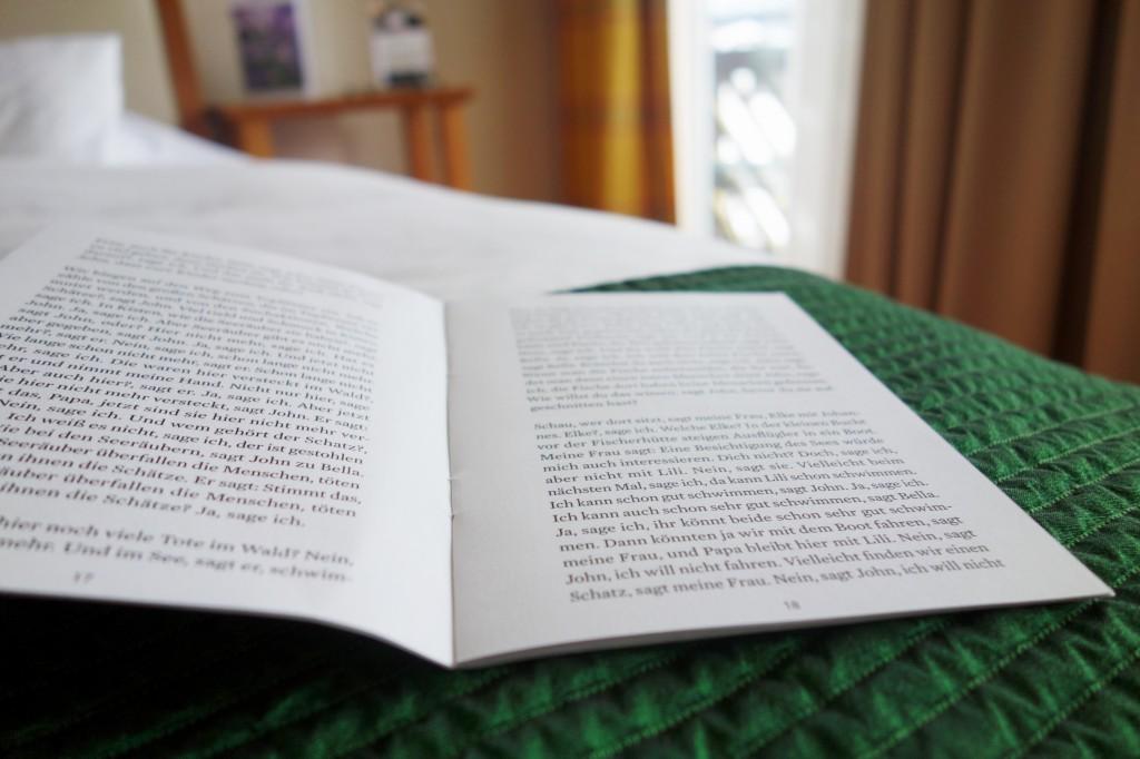 literaturprobe_diewasnerin_badaussee