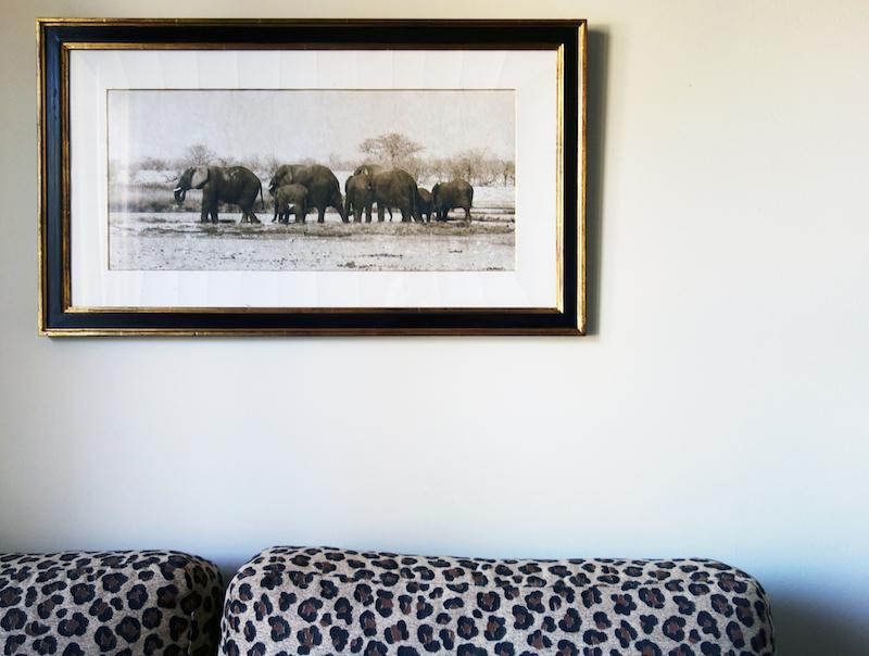 Bild Safari Lindner Hotel Mallorca