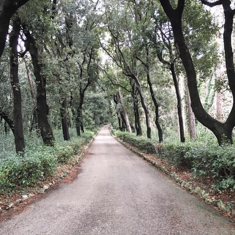 miramare park triest italien