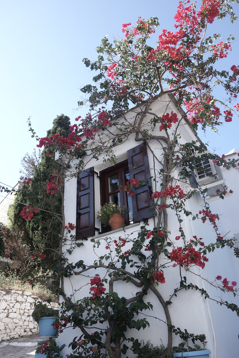 haus-oldtown-alonissos