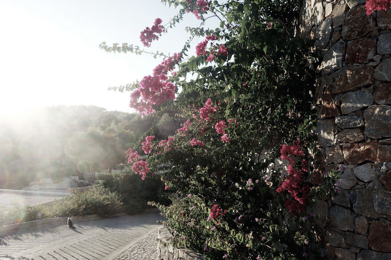 hotel-alonissos-sporaden-greece