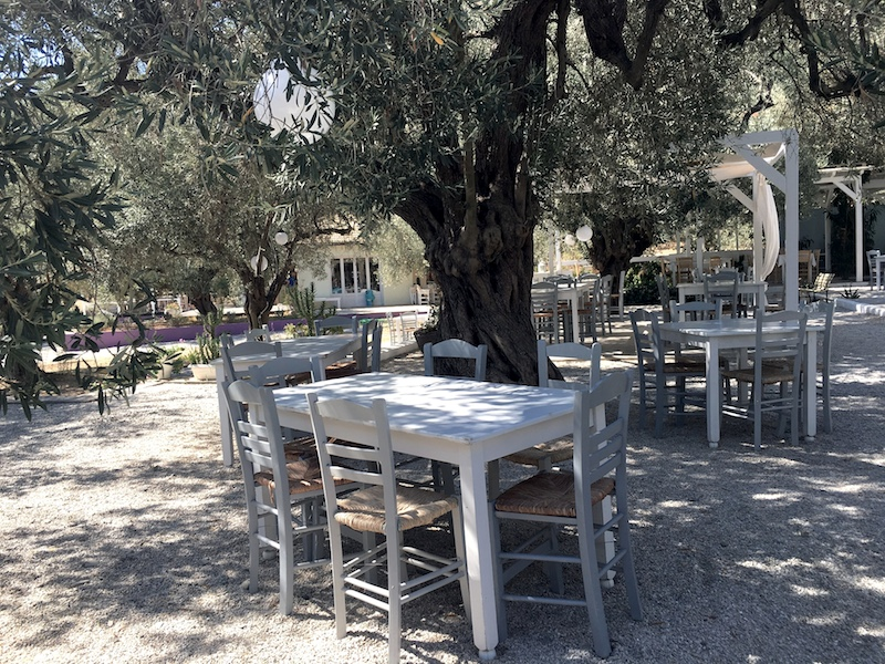 strandrestaurant-alonissos