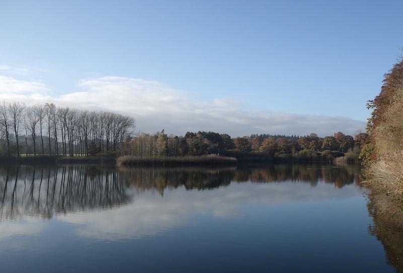 spiegelbild-klostersee