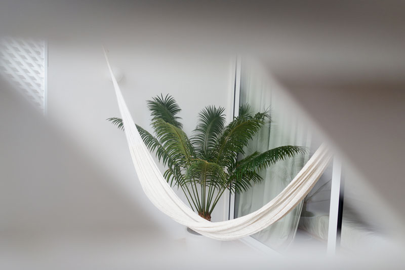 hammock-palme-casa-mae