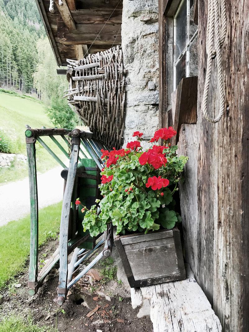 Pelargonien-Gsteier-Gasthof
