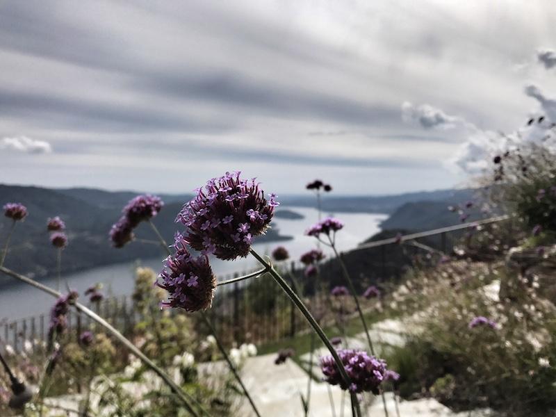 Ausblick Lago dOrta